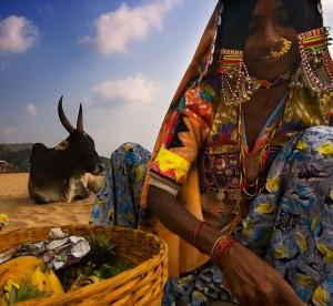 India (6)
