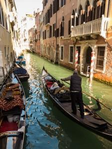 Venice (7)